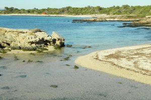 Playa d'es Dolç